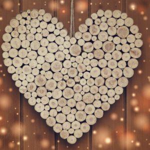pieńki drewna